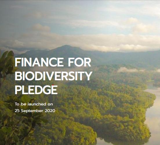 Finance for Biodiversity Pledge